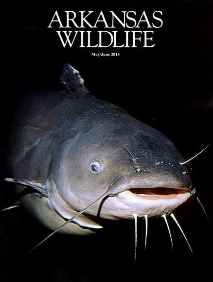 Arkansas Wildlife Cover - 5/1/2013