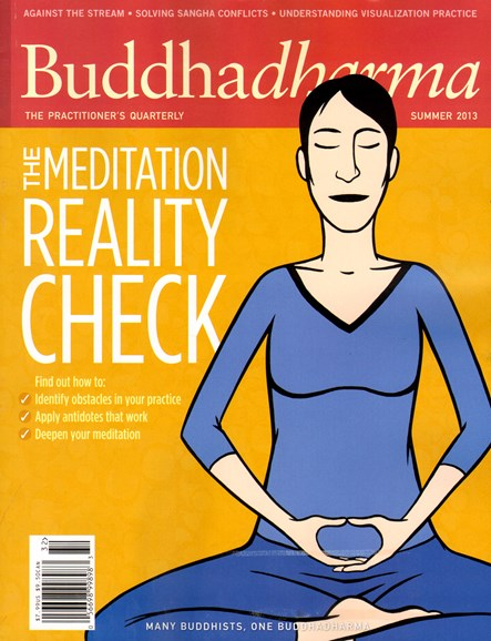 BUDDHADHARMA: THE PRACTIONER'S QUARTERLY Cover - 6/1/2013