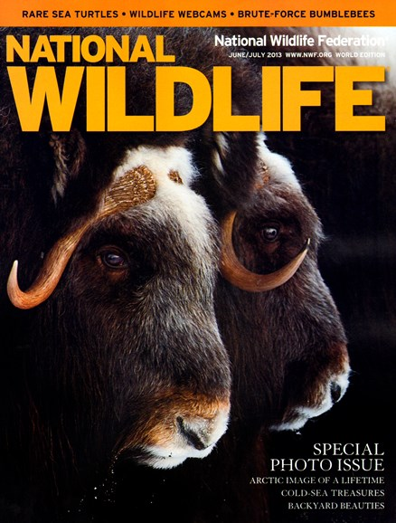 National Wildlife Cover - 6/1/2013