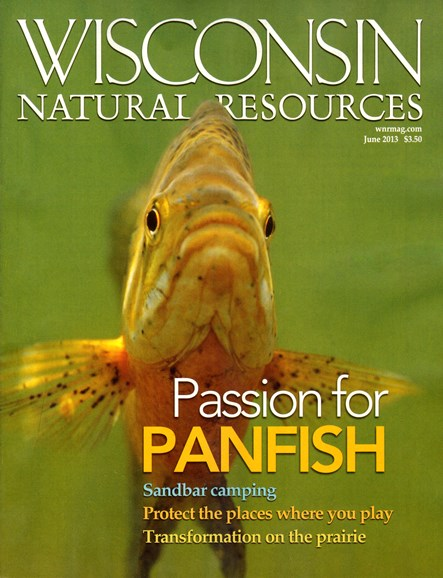 Wisconsin Natural Resources Cover - 6/1/2013