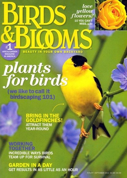 Birds & Blooms Cover - 8/1/2013