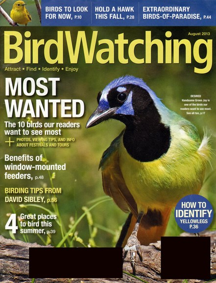 Bird Watching Cover - 8/1/2013