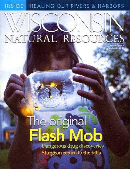 Wisconsin Natural Resources Cover - 8/1/2013