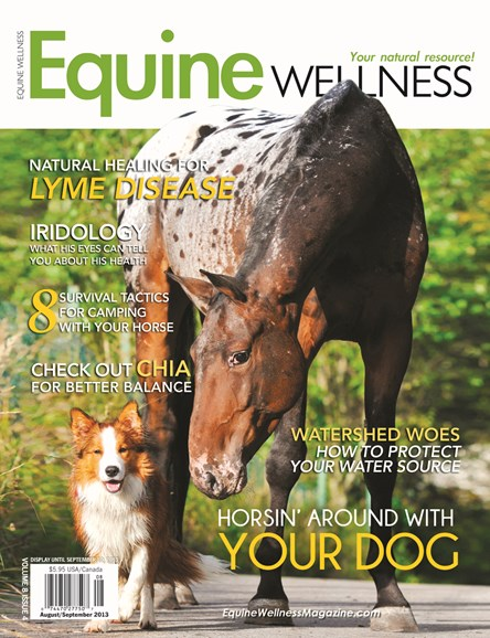 Equine Wellness Cover - 8/1/2013