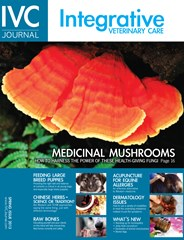 Integrative Veterinary Care Journal