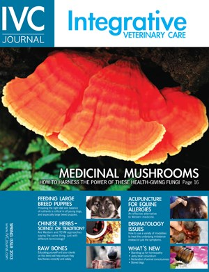 Integrative Veterinary Care Journal | 3/2013 Cover