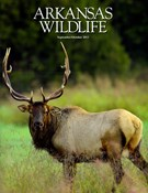 Arkansas Wildlife Magazine 9/1/2013