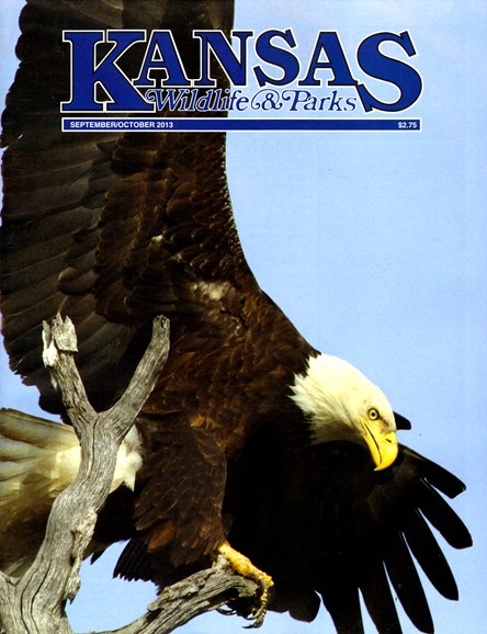 Kansas Wildlife & Parks Cover - 9/1/2013