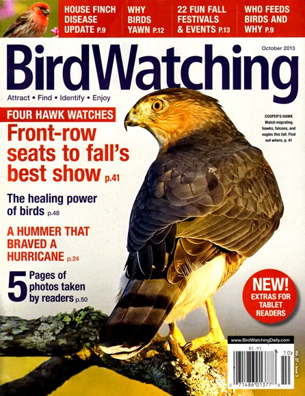 Bird Watching Cover - 10/1/2013