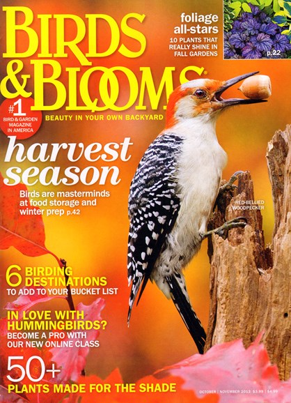 Birds & Blooms Cover - 10/1/2013