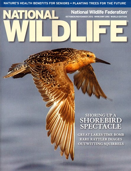 National Wildlife Cover - 10/1/2013
