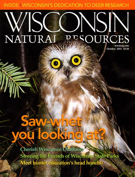 Wisconsin Natural Resources Cover - 10/1/2013