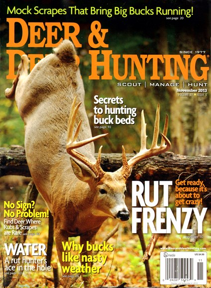 Deer & Deer Hunting Cover - 11/1/2013