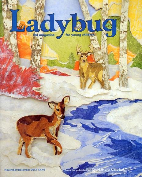 Ladybug Cover - 11/1/2013