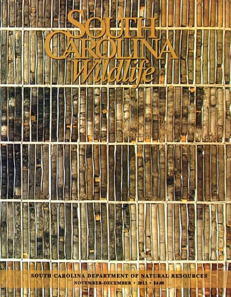 South Carolina Wildlife Cover - 11/1/2013