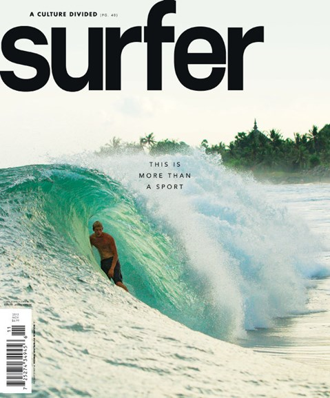 Surfer Cover - 11/1/2013