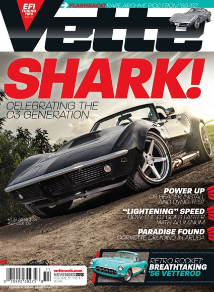 Vette Cover - 11/1/2013