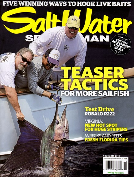 Salt Water Sportsman Cover - 11/1/2013