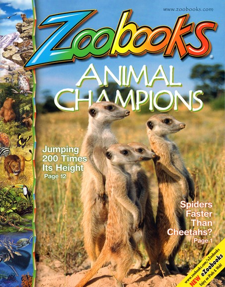 Zoobooks Cover - 10/1/2013
