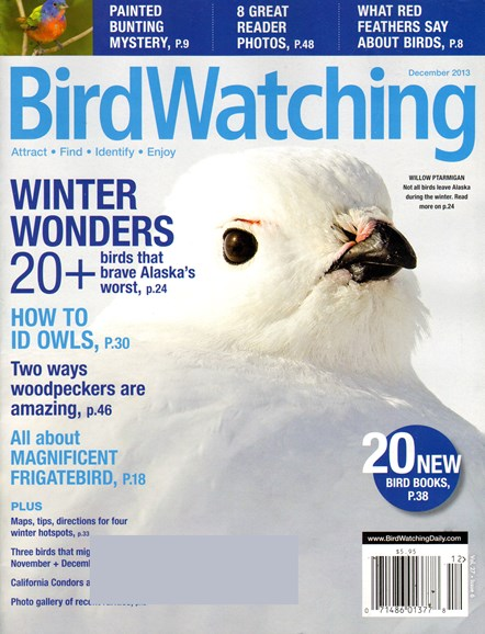 Bird Watching Cover - 12/1/2013