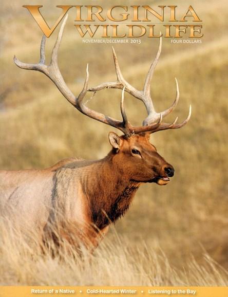 Virginia Wildlife Cover - 11/1/2013