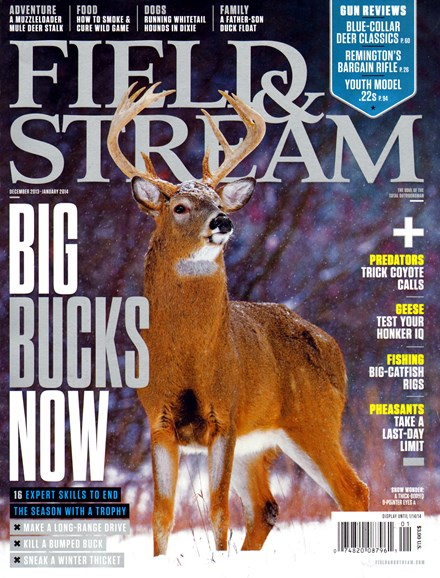 Field & Stream Cover - 12/1/2013