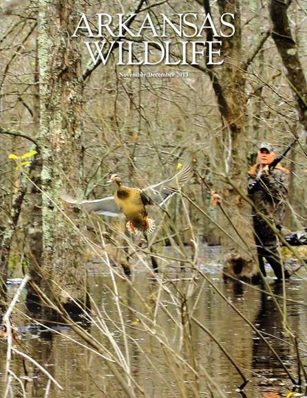 Arkansas Wildlife Cover - 12/1/2013