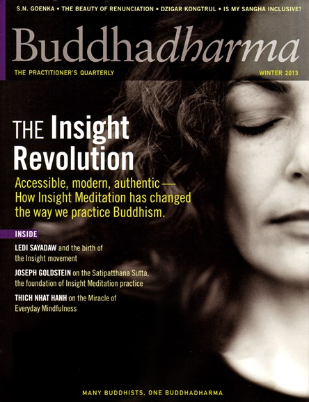 BUDDHADHARMA: THE PRACTIONER'S QUARTERLY Cover - 12/1/2013