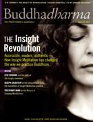 BUDDHADHARMA Magazine 12/1/2013