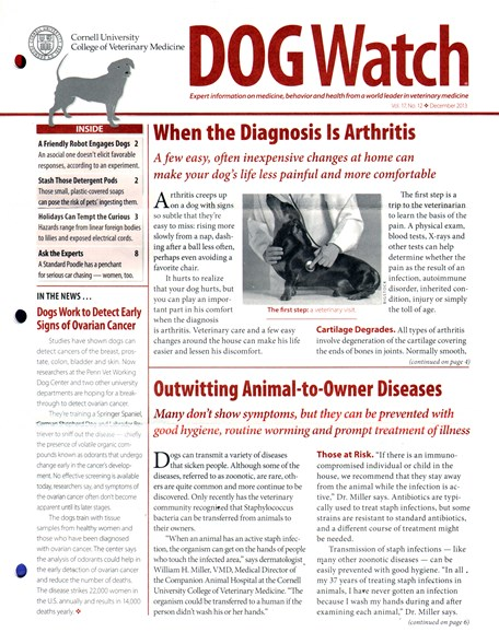 Dogwatch Cover - 12/1/2013