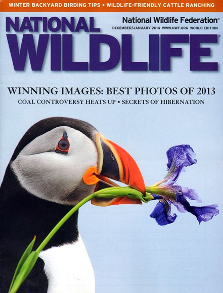 National Wildlife Cover - 12/1/2013
