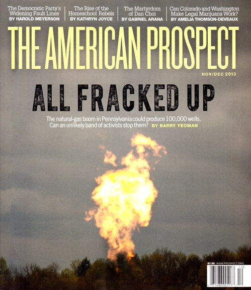 The American Prospect Cover - 11/1/2013