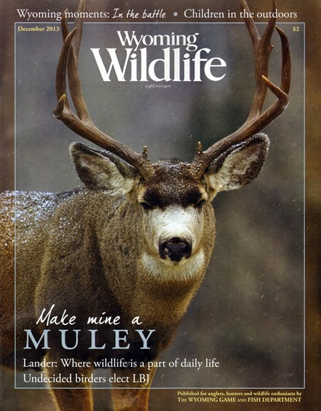 Wyoming Wildlife Cover - 12/1/2013