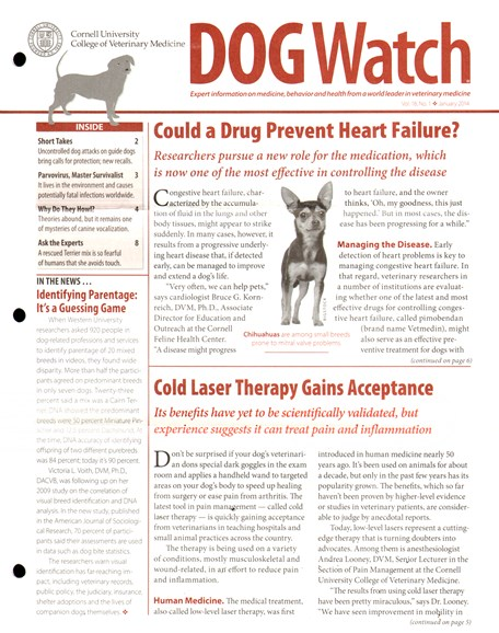 Dogwatch Cover - 1/1/2014