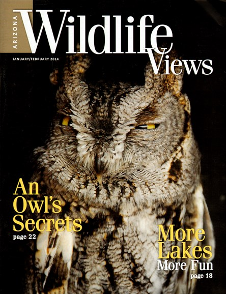 Arizona Wildlife Views Cover - 1/1/2014