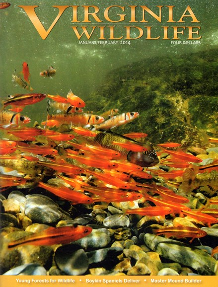 Virginia Wildlife Cover - 1/1/2014