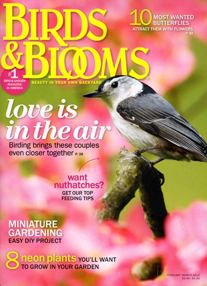 Birds & Blooms Cover - 2/1/2014