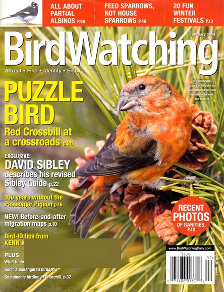 Bird Watching Cover - 2/1/2014