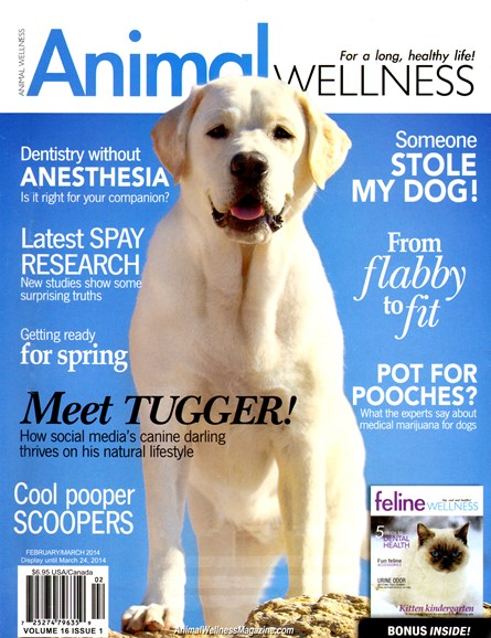 Animal Wellness Cover - 2/1/2014