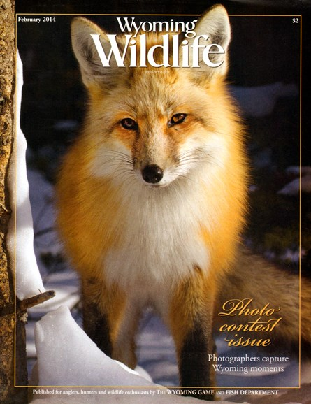 Wyoming Wildlife Cover - 2/1/2014