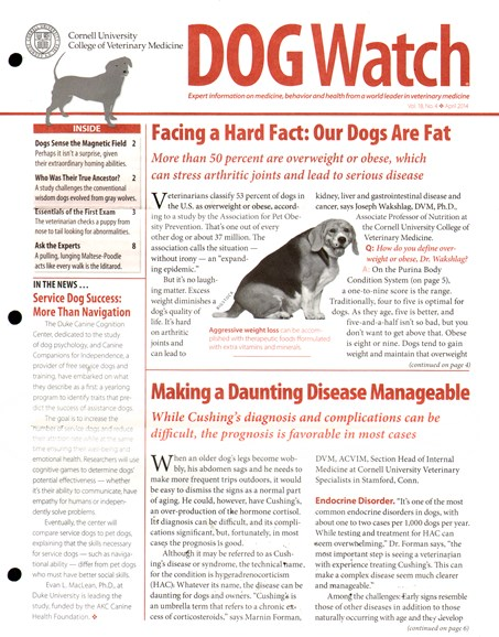 Dogwatch Cover - 4/1/2014