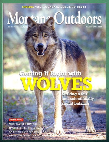 Montana Outdoors Cover - 3/1/2014