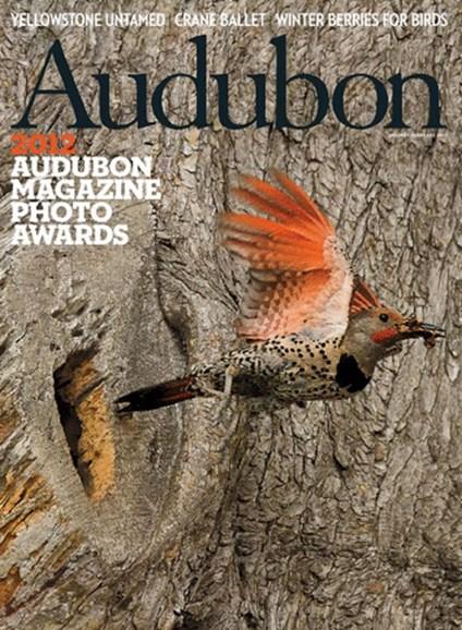 Audubon Cover - 1/1/2013