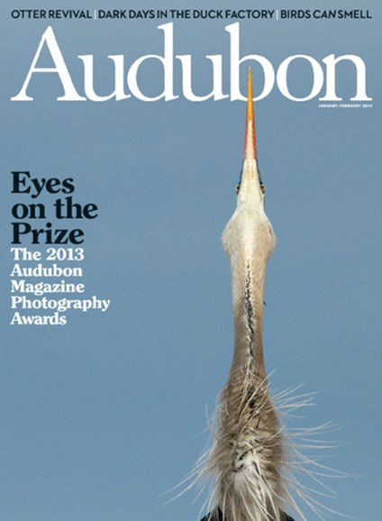Audubon Cover - 1/1/2014