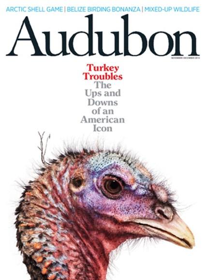 Audubon Cover - 11/1/2013