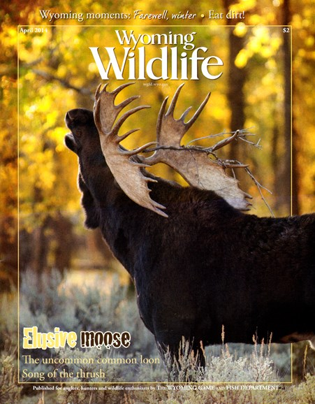Wyoming Wildlife Cover - 4/1/2014