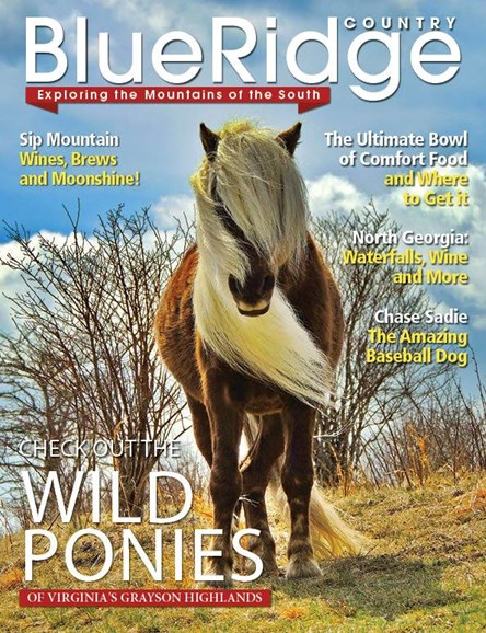 Blue Ridge Country Cover - 3/1/2014