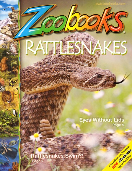 Zoobooks Cover - 4/1/2014