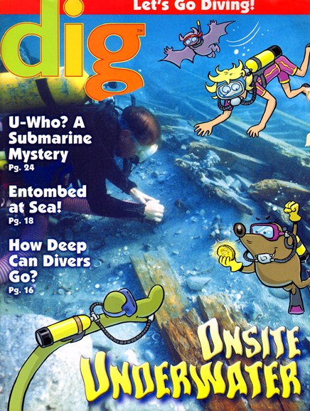 Dig Magazine Cover - 5/1/2014
