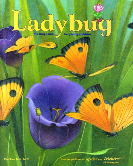 Ladybug Cover - 5/1/2014